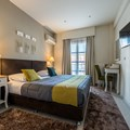 Forest - Double or Twin Room