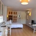 Standard double studio (ground floor)